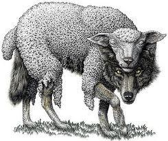 Wolves & Sheep